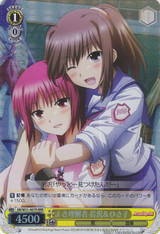 Iwasawa & Hisako, Understanding of Expectations AB/W31-007R RRR