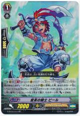 Knight of Reform, Pier RR G-BT04/011