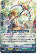 Early Flowering Maiden, Pia R G-BT04/043