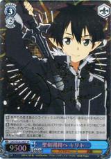 Kirito, to Obtain the Holy Sword SAO/SE26-29SP SP