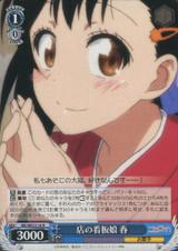 Haru, Mascot Girl of the Store NK/WE22-24