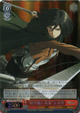 """Cleared Future"" Mikasa AOT/S35-060S SR"