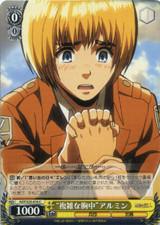 """Complicated Feelings"" Armin AOT/S35-016"