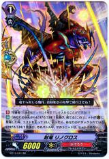 Seal Dragon, Rinocross RR BT11/011