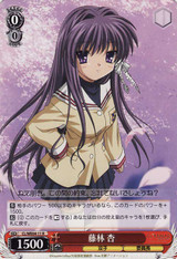 Kyou Fujibaya CL/WE04-11