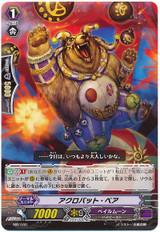 Acrobat Bear MB/040