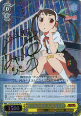 Mayoi Hachikuji, Overall Happiness MG/S39-001SP SP