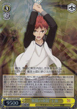 Unlimited Blade Works Shirou FS/S36/003R RRR
