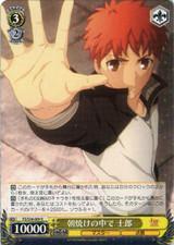 Shirou, in the Morning Sun FS/S34/009