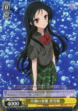 Kuroyukihime, Unexpected Circumstances AW/S43/011 U