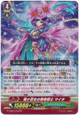 Rubellum Lily Splendorous Musketeer, Myra G-CHB01/018 RR