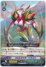 Florneula Dragon G-TD12/004
