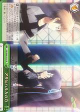 Power of Asahi Haruka RW/W48-053S SR