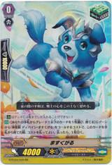 Maskgal G-FC04/049 RR