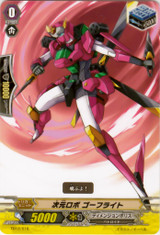 Dimensional Robo, Goflight TD12/016