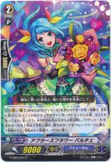 Applause Flower, Palche G-CB05/041 C