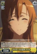 Asuna, Response to Proposal SAO/S47-018 C
