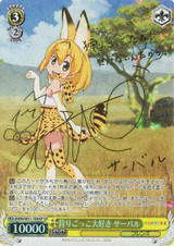 Serval, Loves Play Hunting KMN/W51-T09SP SP