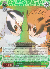 Northern White-faced Owl & Eurasian Eagle Owl, Chiefs of the Island KMN/W51-041R RRR