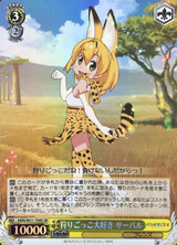 Serval, Loves Play Hunting KMN/W51-T09S SR