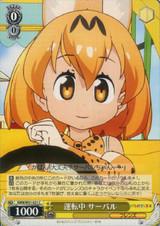 Serval, Driving KMN/W51-021 C
