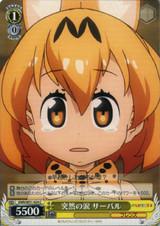 Serval, Sudden Tears KMN/W51-024 C