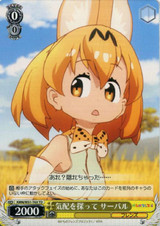 Serval, Searching for a Sign KMN/W51-T03 TD