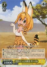 Serval, Loves Play Hunting KMN/W51-T09 TD