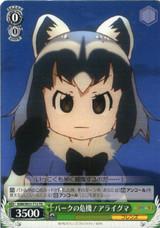 Common Raccoon, Crisis for the Park! KMN/W51-T13 TD