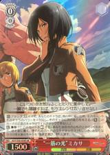 Ray of Light Mikasa AOT/S50-054S SR