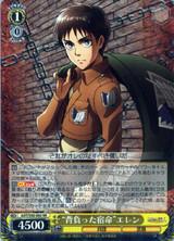 Fate Shouldered Eren AOT/S50-002 RR