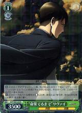 Until Death Levi AOT/S50-030 R