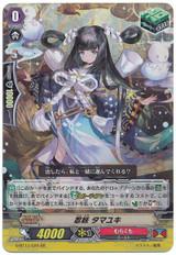 Stealth Fiend, Tamayuki G-BT13/020 RR
