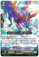 Antibody Pegasus G-BT13/054 C