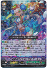 Ranunculus of Phantasmic Blue, Ahsha G-EB02/009 RRR