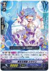 Interesting Hope, Shiratsuyu G-CB07/037 C