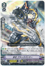 Treasured, Black Panther V-EB01/024 R
