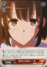 Megumi, Encounter With Destiny? SHS/W56-T13 TD