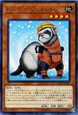 Rescue Ferret COTD-JP029 Rare