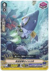 Dolphin Soldier of High Speed Raids V-TD03/013 TD
