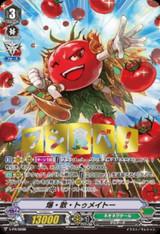 Exploding Tomato V-PR/0098 PR