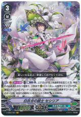 White Lily Musketeer, Cecilia V-EB03/003 VR