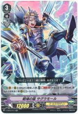 Battlefield Storm, Sagramore V-EB03/013 RR