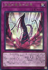 Blooming Rose DP21-JP027 Rare