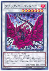 Black Rose Dragon DP21-JP028 Common