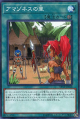 Amazoness Village DP18-JP014 Common