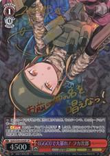 """Fukaziroh, Rampaging in """"GGO""""! GGO/S59-036SP SP"""