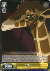 Giraffe RSL/S56-020 C