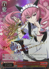 Melancholy of the Genius Girl Kurisu Makise STG/S60-052SP SP