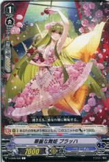 Dance Queen, Pullach V-EB05/039 C